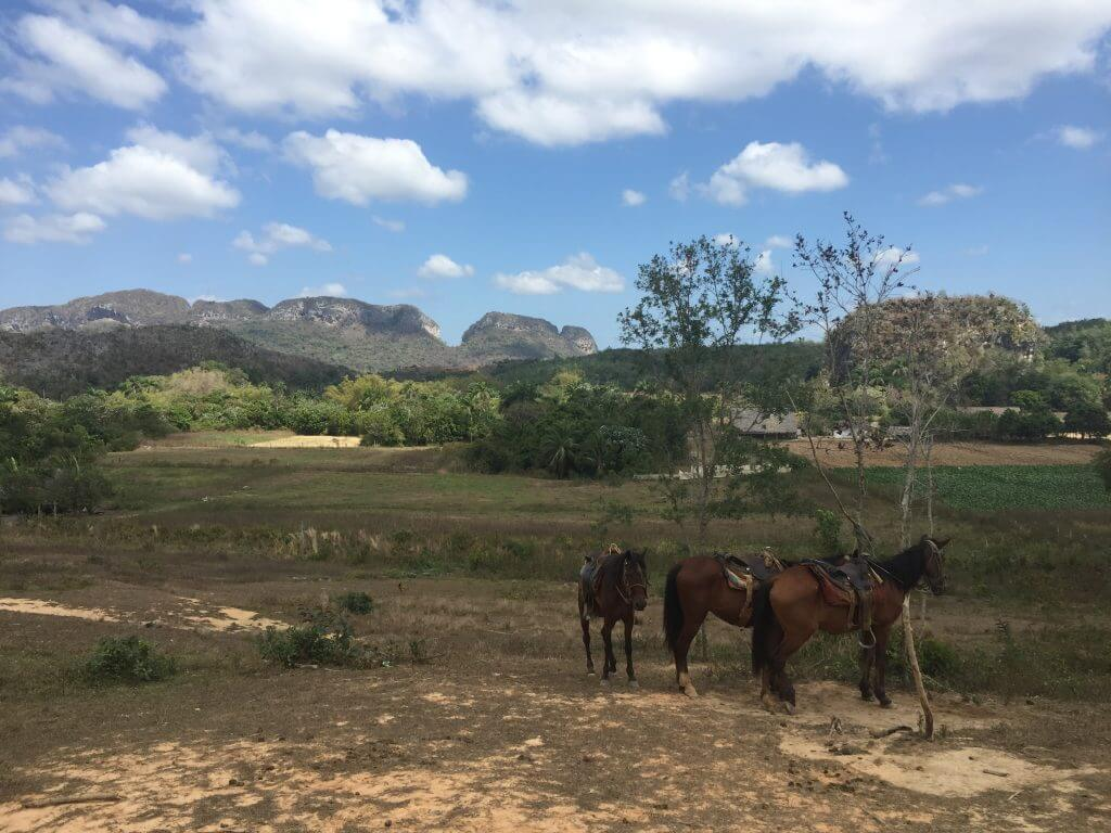 Vinales Horseback Riding