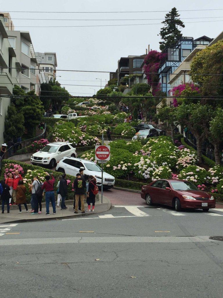 Super Curvy San Fran Street Lombard