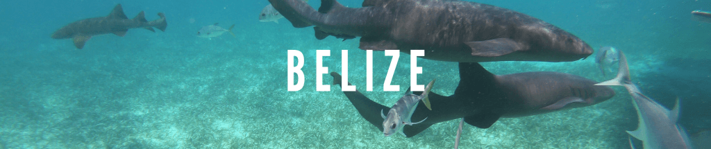 Travel Destination Belize
